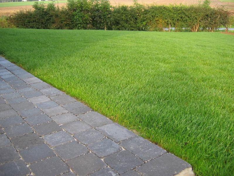 Entretien espace vert et jardin nathur paysagiste for Entretien jardin 02